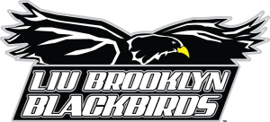 3500_liu-brooklyn_blackbirds-primary-2008[1]