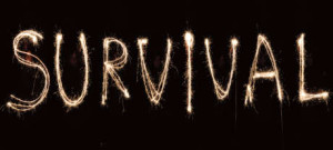 silvester-survival-logo-big-slim_460[1]